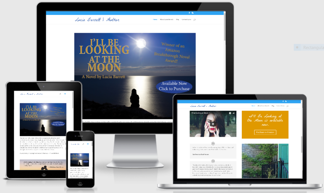 Vision Marketing Author website